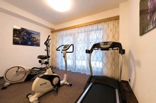 Exercise indoors: in the fitness room of Apart Alpenleben in St. Anton am Arlberg